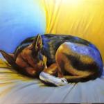 my_sleeping_doggy