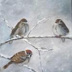 winter_birds