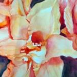Lilies Aglow